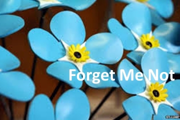 Forget Me Not cover2